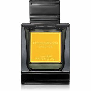 Ermenegildo Zegna Javanese Patchouli parfémovaná voda pro muže 100 ml