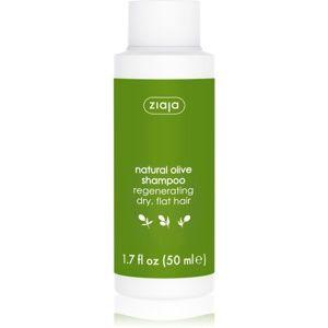 Ziaja Natural Olive regenerační šampon pro suché vlasy