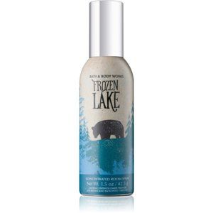 Bath & Body Works Frozen Lake bytový sprej 42,5 g