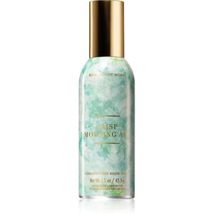 Bath & Body Works Crisp Morning Air bytový sprej 42,5 g