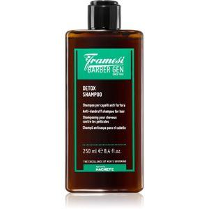Framesi Barber Gen Detox čisticí detoxikační šampon proti lupům 250 ml