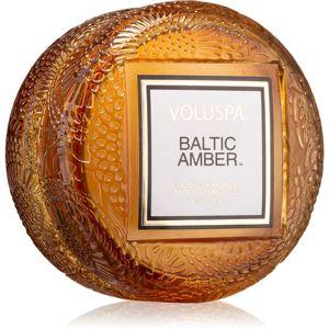 VOLUSPA Japonica Baltic Amber vonná svíčka II. 51 g