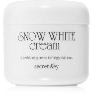 Secret Key Snow White zesvětlující krém pro rozjasnění pleti 50 g