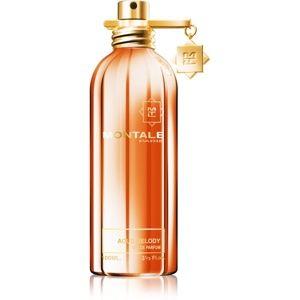 Montale Aoud Melody parfémovaná voda unisex 100 ml