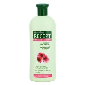 Subrina Professional Recept Intensive & Balancing šampon proti lupům p
